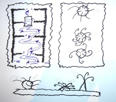 Scruffy-sketch-web